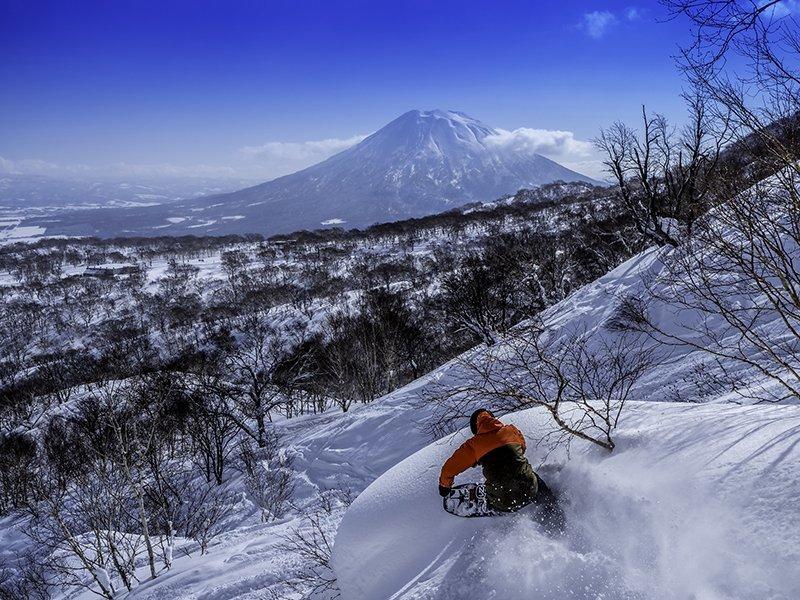 Evan Wilcox snowboarding in Niseko