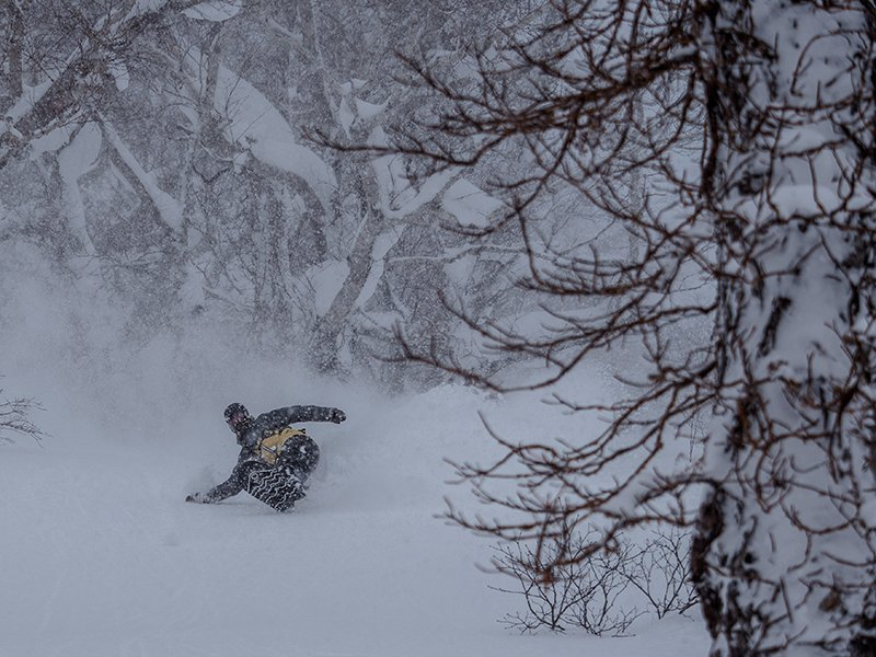 evan wilcox snowboarding powder in niseko