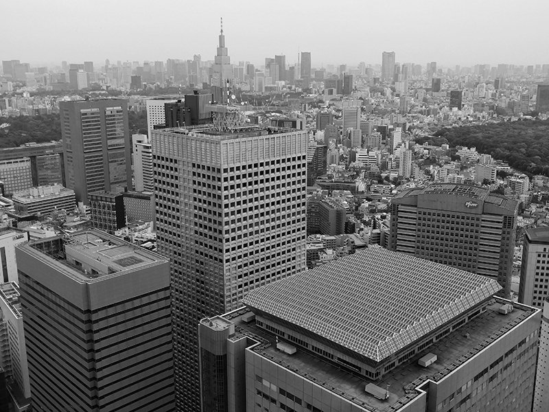 Tokyo skyline from government building