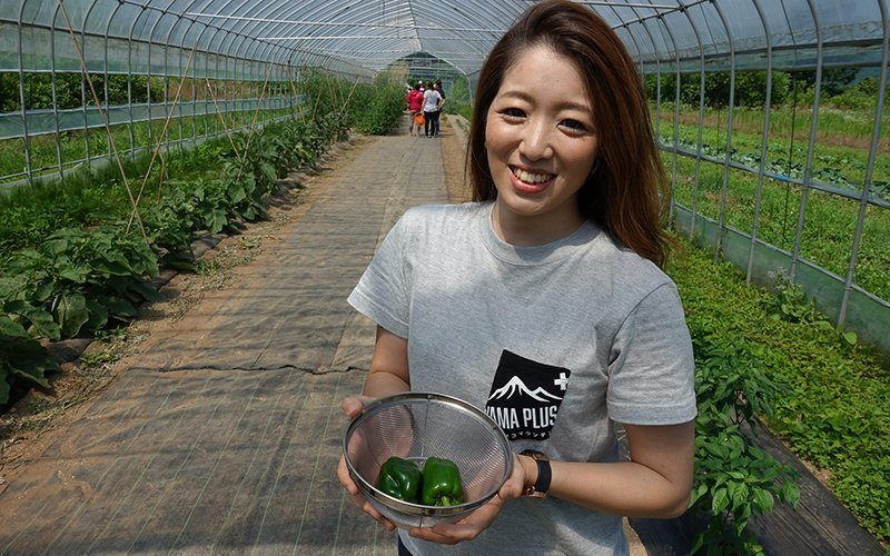 Misakis first time harvesting fresh vegetables