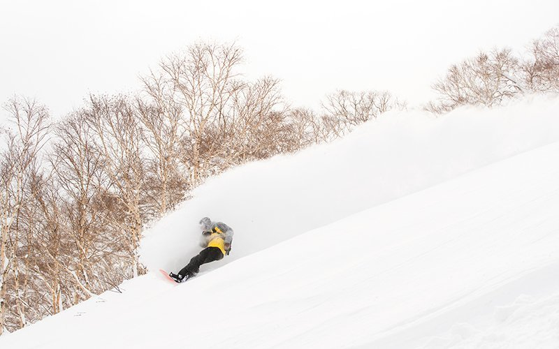 evan wilcox snowboarding niseko japan powder