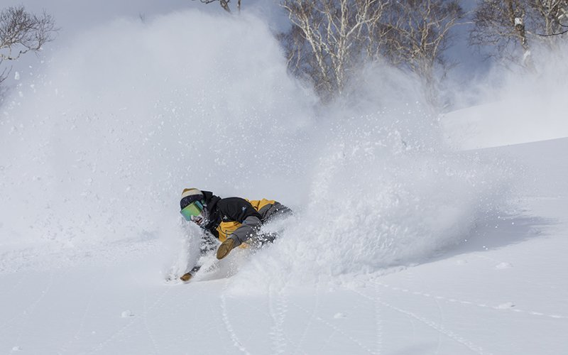 best backcountry guiding niseko japan