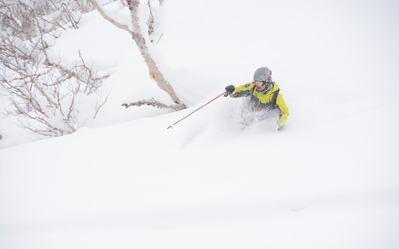 hanazono powder guides best niseko