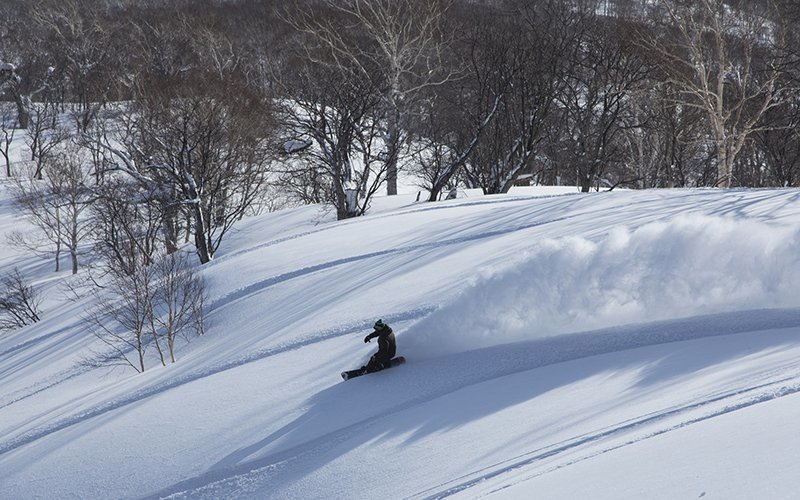 deep powder snowboarding niseko japan