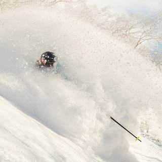Vacation niseko february lead small